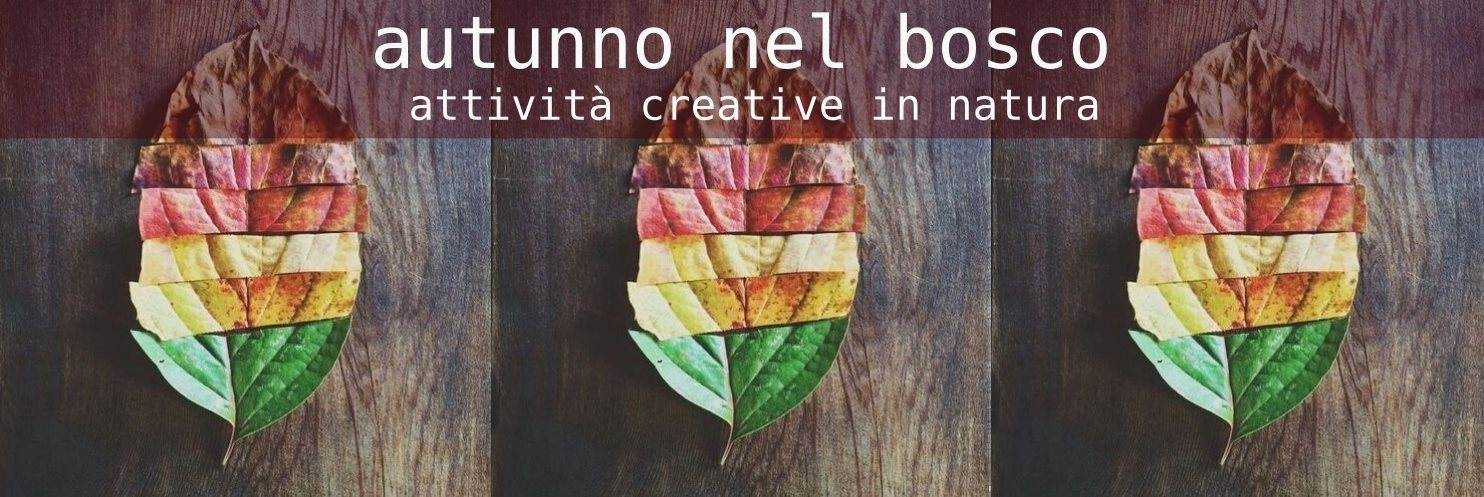 Autunno nel Bosco - attività creative in natura