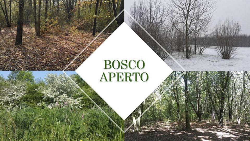 Bosco Aperto - Valverde Verona 2020